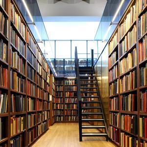 Библиотеки Большой Вишеры