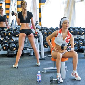 Фитнес-клубы Большой Вишеры