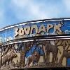 Зоопарки в Большой Вишере
